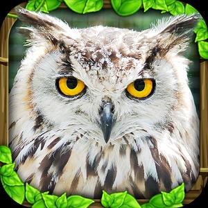 Owl Simulator - иконка