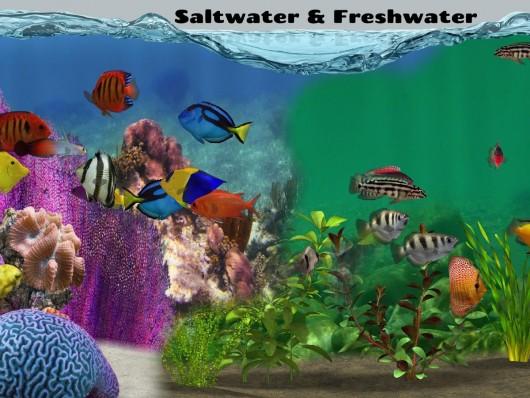 Fish Farm 2  - чудесный фермерский мир