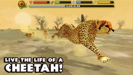 Cheetah Simulator - игра