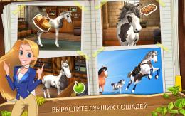 Horse Haven World Adventures - мини-игры