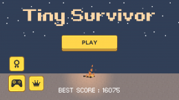 Tiny Survivor - меню