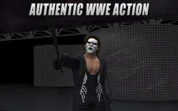 WWE 2K - боец