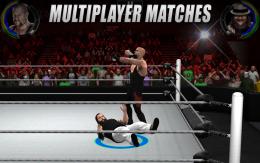 WWE 2K - мультиплеер