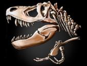 The Lost Lands: Dinosaur Hunter - иконка