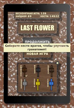 Last Flower - оружие